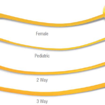 Folles Catheter